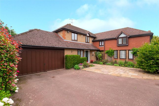 Thumbnail Detached house for sale in Chestnut Walk, St. Ippolyts, Hitchin, Hertfordshire