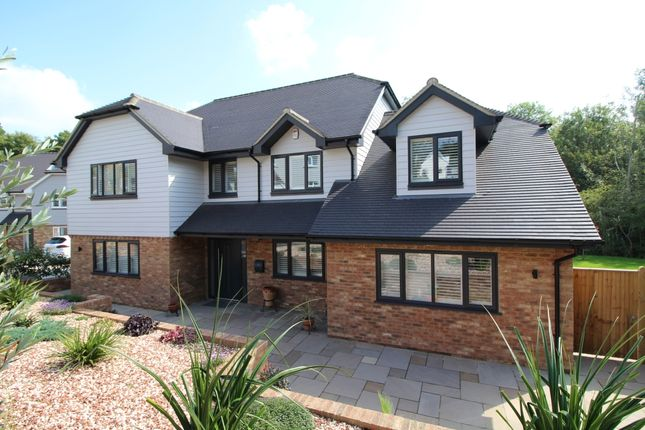 Thumbnail Detached house for sale in Brookdale, St. Leonards-On-Sea, East Sussex