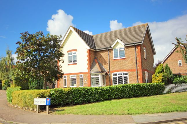 Thumbnail Detached house for sale in Nash Drive, Chelmsford