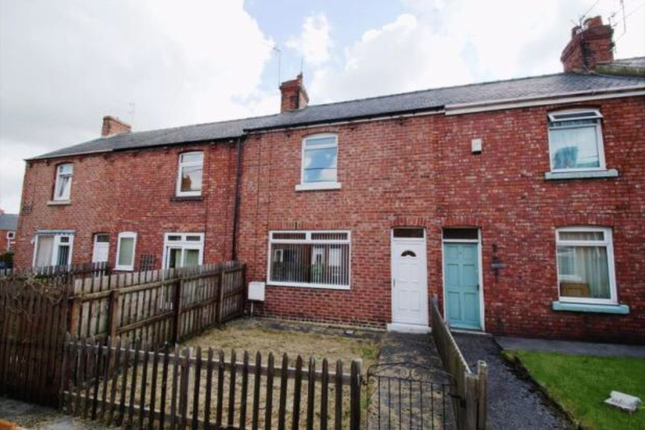 Thumbnail Terraced house to rent in Lime Terrace, Langley Park, Durham
