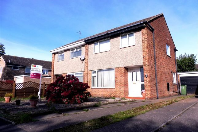 Thumbnail Semi-detached house to rent in Petrel Crescent, Norton, Stockton-On-Tees