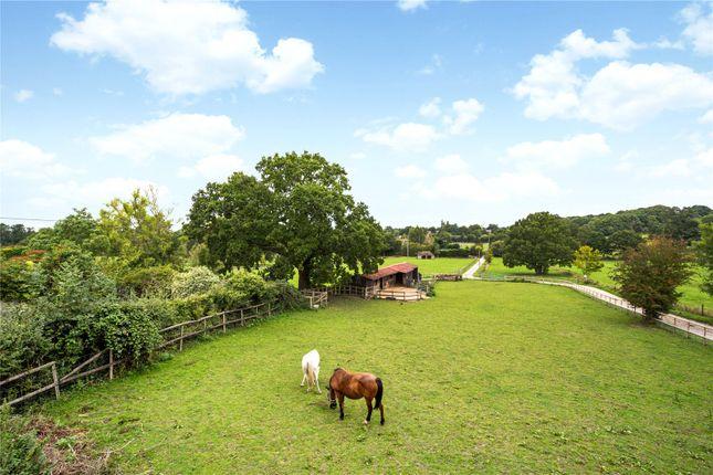 Picture No. 16 of Bushylease Cottages, Redlands Lane, Crondall, Farnham GU10