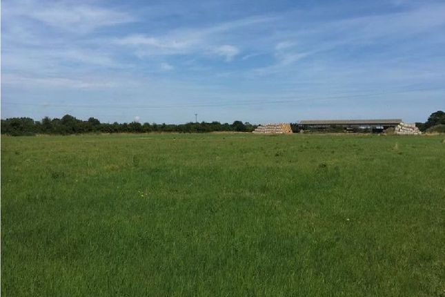 Thumbnail Land for sale in Mead Close, Buxton, Norwich