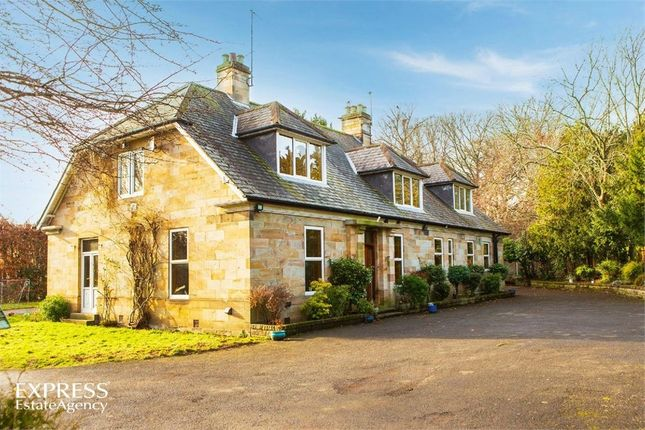 Thumbnail Detached house for sale in Chester Le Street, Chester Le Street, Durham