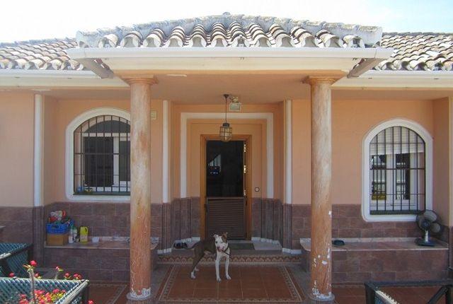021 (Copy) of Spain, Málaga, Mijas, El Chaparral