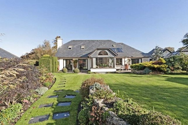 Thumbnail Detached bungalow for sale in Chagford, Newton Abbot