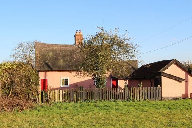 Thumbnail Cottage to rent in Braiseworth, Eye, Suffolk