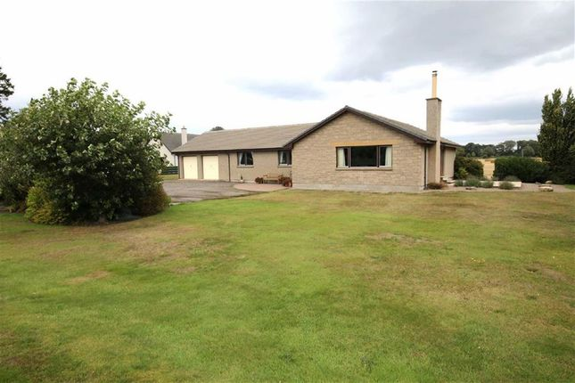 Thumbnail Detached bungalow for sale in Calcots, Elgin