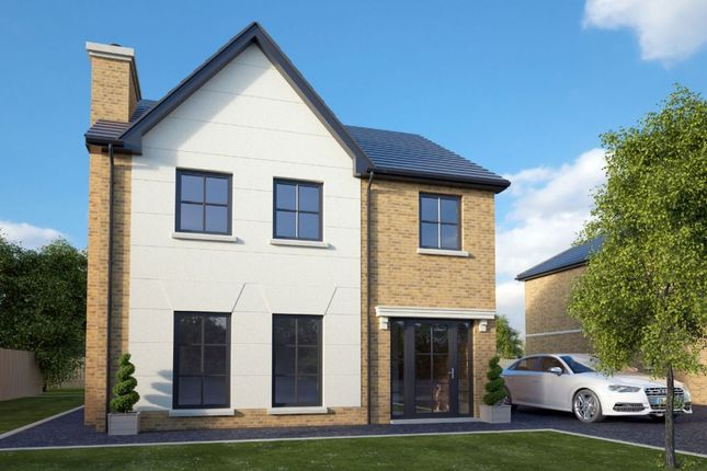Thumbnail Detached house for sale in Lisnagrilly Hall, Portadown, Craigavon