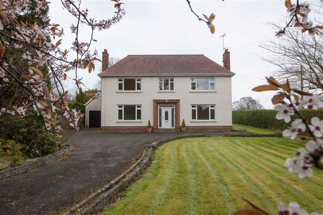 Thumbnail Detached house for sale in 17, Gilford Road, Craigavon