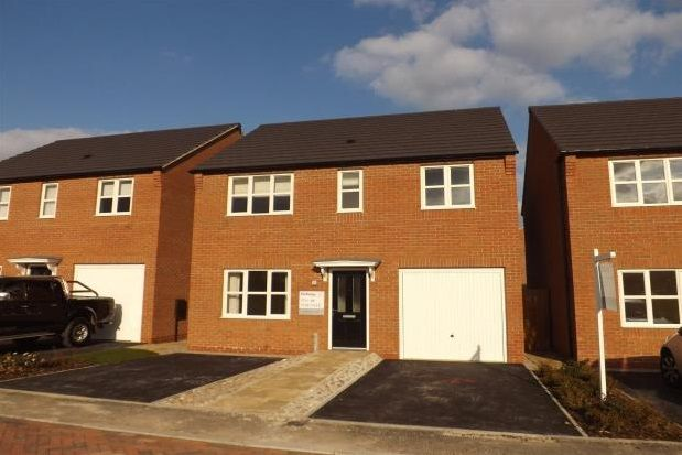 Thumbnail Detached house to rent in Sandpiper Place, Warsop Vale, Mansfield