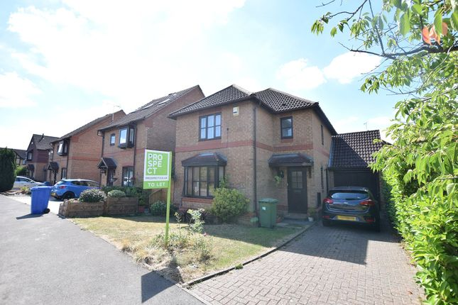 Thumbnail Detached house to rent in William Sim Wood, Winkfield Row, Bracknell, Berkshire