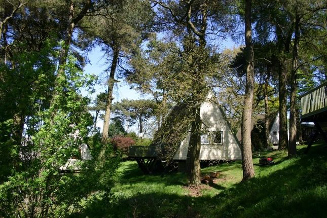 Thumbnail Detached bungalow to rent in Craigs Chalet Park, Williamscraig, Linlithgow