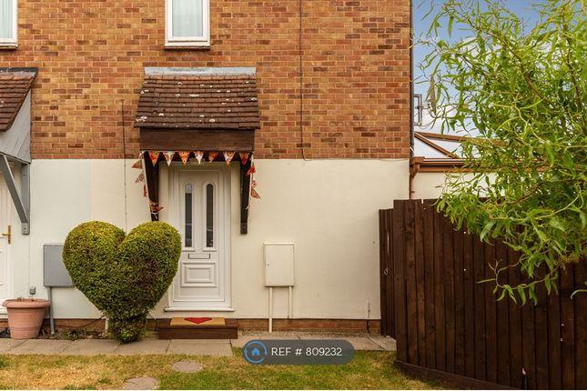 Thumbnail Semi-detached house to rent in Chalkdown, Stevenage