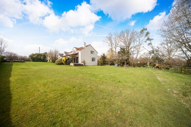 Thumbnail Detached house for sale in Stoke St. Mary, Taunton