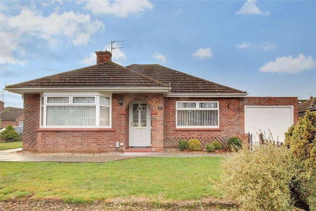 Thumbnail Detached bungalow for sale in Magazine Farm Way, Colchester