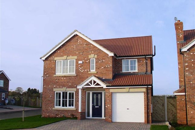 Thumbnail Property for sale in Burdock Road, Scunthorpe