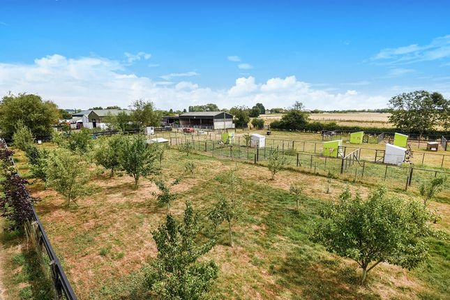 Orchard of Hagnaby Lane, Keal Cotes, Spilsby PE23