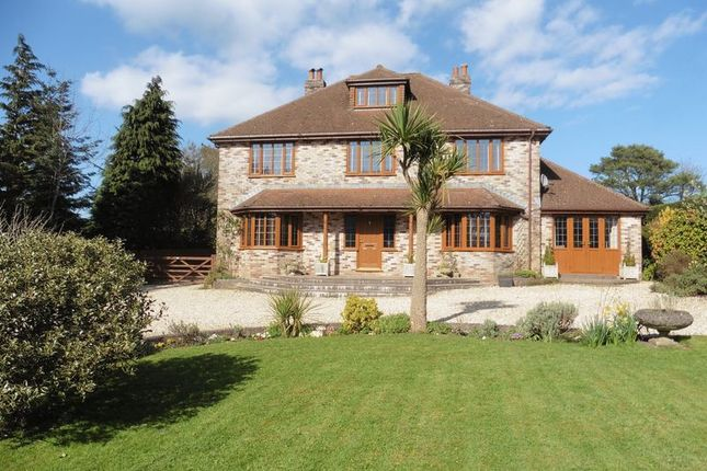 Thumbnail Detached house for sale in Charmouth Road, Raymonds Hill, Near Axminster