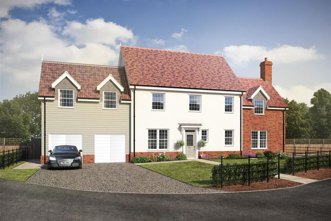 Thumbnail Detached house for sale in Hollies, Ipswich, Ipswich