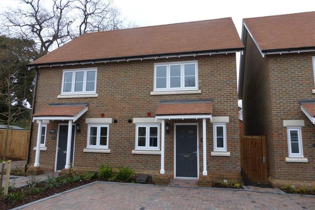 Thumbnail Property to rent in Kings Court, Harwood Road, Horsham