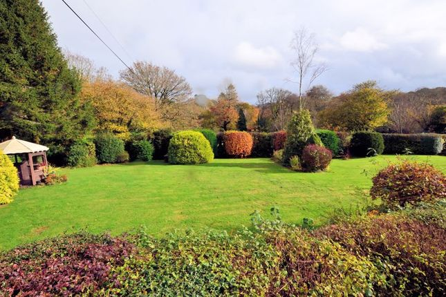 Photo 21 of Clearbrook, Yelverton PL20