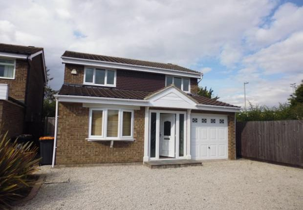 Thumbnail Detached house to rent in Clovelly Way, Devon Park