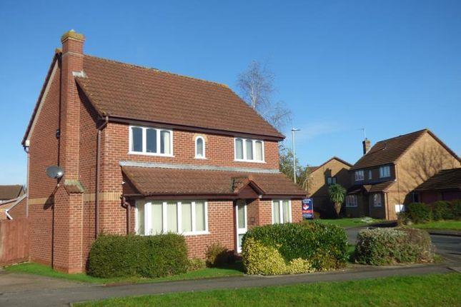Thumbnail Detached house to rent in Honeysuckle Drive, Abbeymead, Gloucester