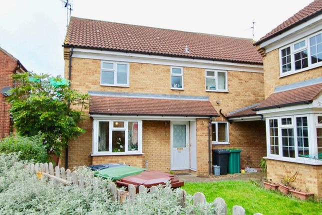 Thumbnail Semi-detached house to rent in Eaglesthorpe, Peterborough
