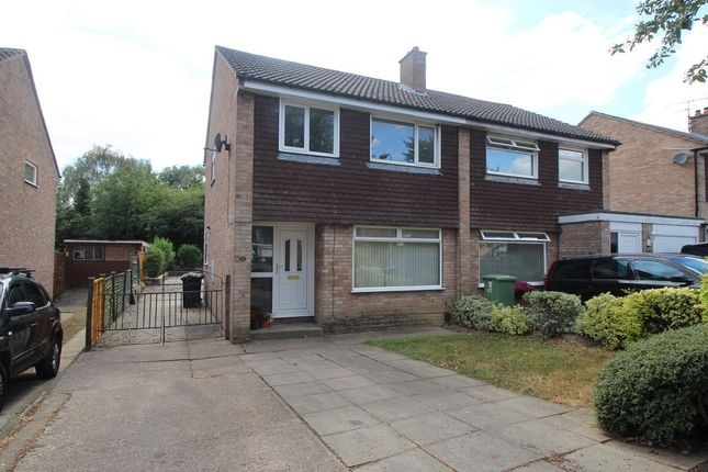 Thumbnail Semi-detached house to rent in Arnold Avenue, Gonerby Hill Foot, Grantham