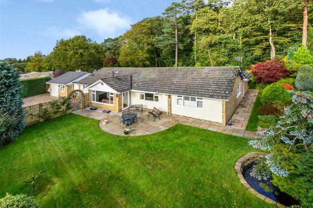 Thumbnail Bungalow for sale in Cypress Way, Grayshott, Hindhead