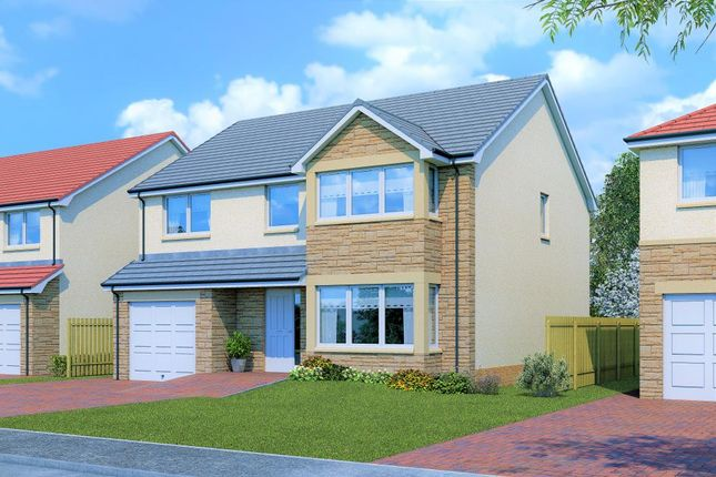 Thumbnail Detached house for sale in Birchwood House Type, Ballochney Brae, Plains, Plains