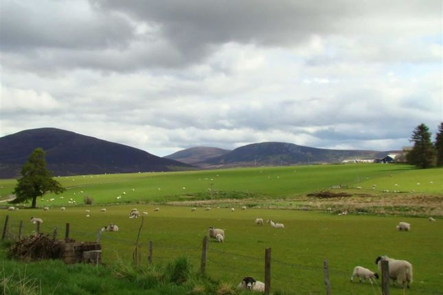 Thumbnail Land for sale in Chapeltown, Ballindalloch