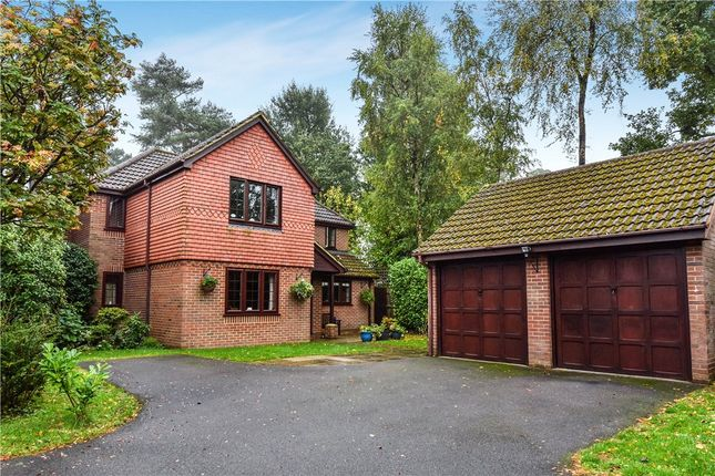Thumbnail Detached house for sale in Theobalds Way, Frimley, Camberley, Surrey