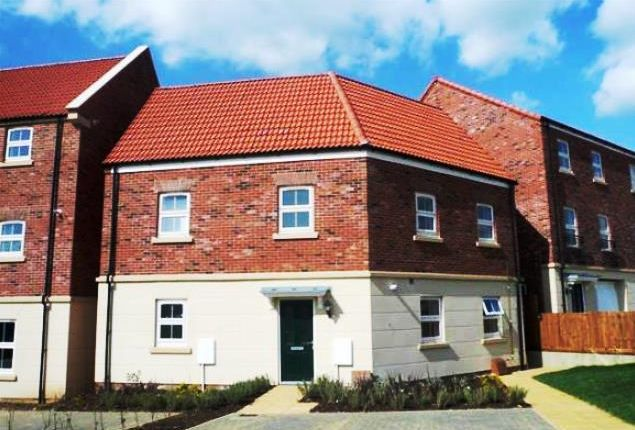 Thumbnail Property to rent in Nina Carroll Way, Kettering