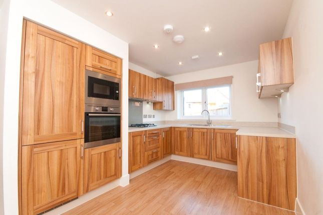 Thumbnail Detached house for sale in Sunflower Lane, Polegate