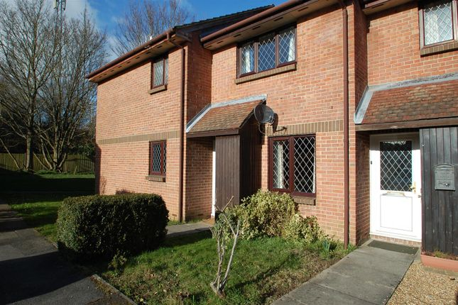 Thumbnail Terraced house to rent in Drum Mead, Petersfield