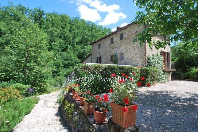 Water Mill Garden Pool For Sale Preggio Umbertide