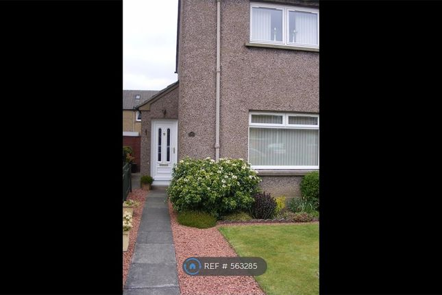 Thumbnail Semi-detached house to rent in Torridon Avenue, Falkirk