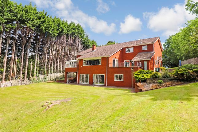 Thumbnail Detached house for sale in Malpas Road, Newport