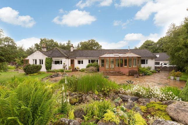 Thumbnail Detached bungalow for sale in Bowmuir, Libberton, Lanark