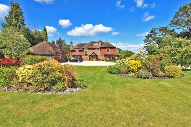 Thumbnail Detached house for sale in Sandy Down, Boldre, Lymington