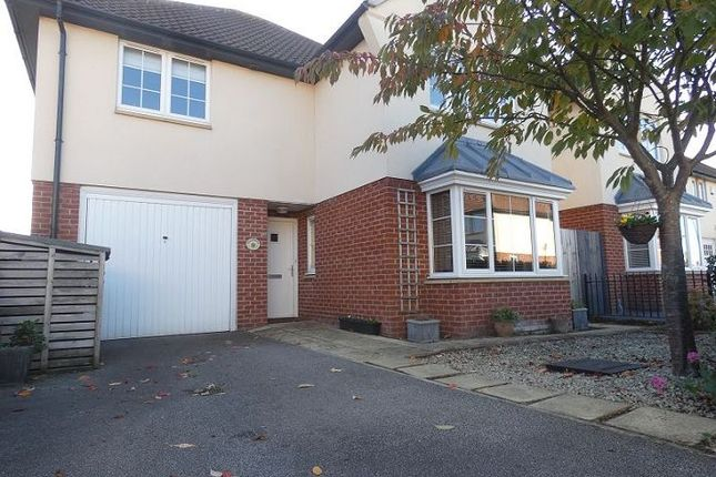 Thumbnail Detached house to rent in Longdales Place, Lincoln