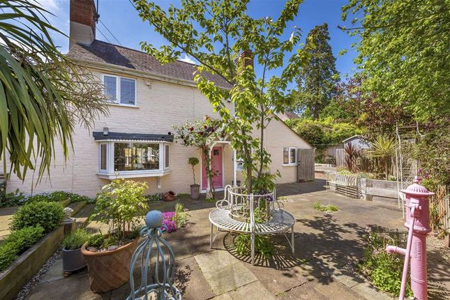 Thumbnail Cottage for sale in Hallow Road, St Johns, Worcester