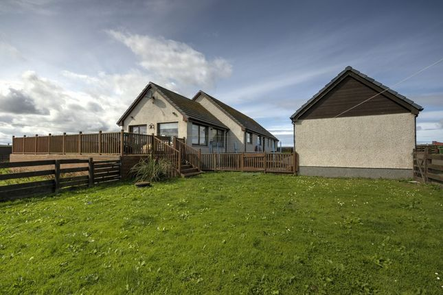 Thumbnail Detached bungalow for sale in Auckengill, Wick, Caithness.