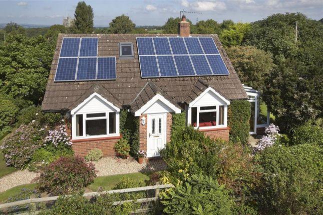Thumbnail Detached bungalow for sale in Talaton, Exeter, Devon