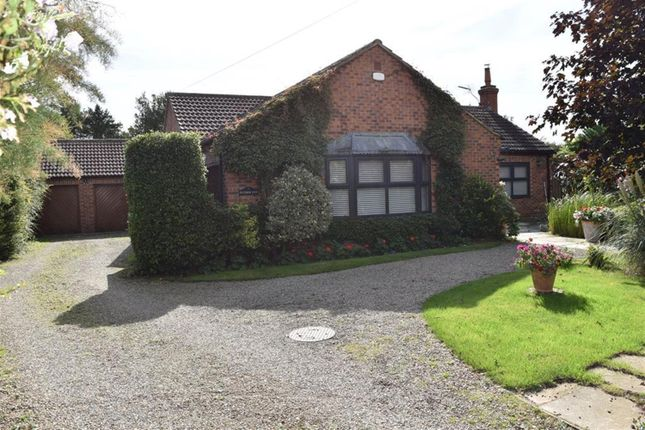 Thumbnail Detached bungalow to rent in James, Thirsk