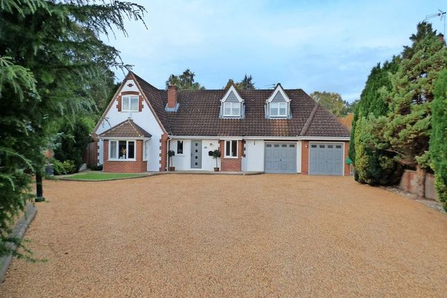 Thumbnail Detached house for sale in Heath Road, Thorpe End, Norwich