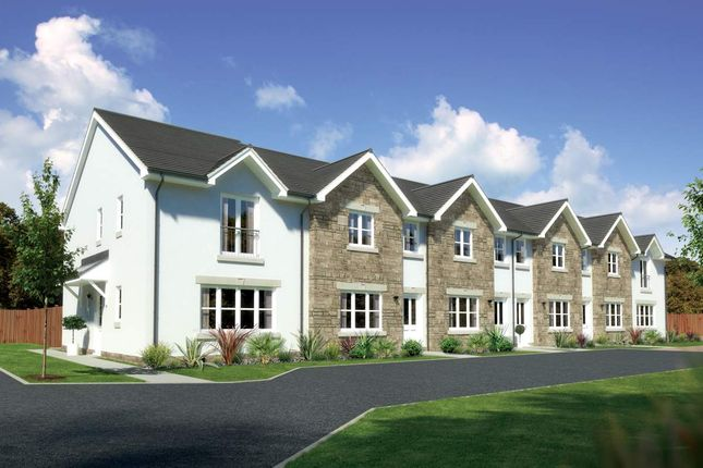"Thumbnail Terraced house for sale in ""Argyll"" at Earl Matthew Avenue, Arbroath"