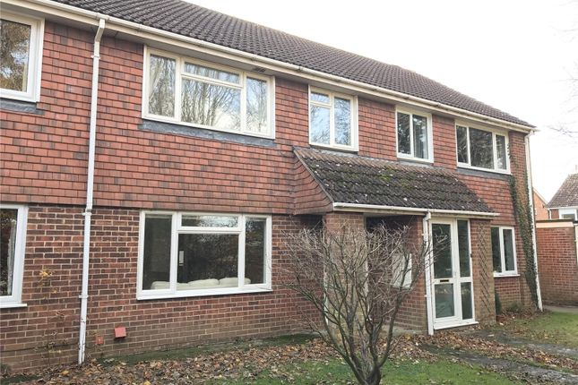 Thumbnail Terraced house to rent in De Lucy Avenue, Alresford, Hampshire